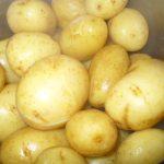 Kartoffeln nach dem Kochen